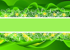 Abstract green background with flowers end text place Royalty Free Stock Images