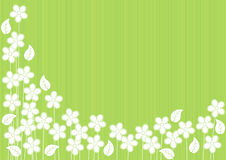 Abstract Green Background with Flowers Stock Photos