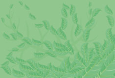 Abstract green background with leaf. Stock Photography