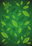 Abstract green background of leaves. Vector abstract green background of leaves Stock Photography