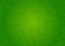 Abstract green background with leaves Royalty Free Stock Photos