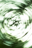 Abstract green background. Shooting a tree at the lens rotation Royalty Free Stock Images