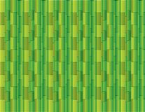 Abstract green background using many straight bamboos for presentation vector. Illustration stock illustration