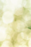 Abstract green background with white shapes. Abstract green background with white blurred shapes in the form of an octahedron Royalty Free Stock Photography