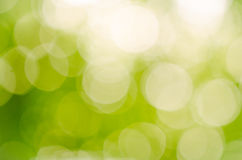 Abstract green blur background Stock Images