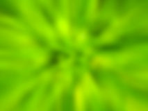 Abstract green blur. Stock Photography