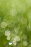 Abstract green bokeh circles Royalty Free Stock Images