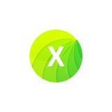Abstract green circle ecology symbol. Clean organic icon letter Royalty Free Stock Photography