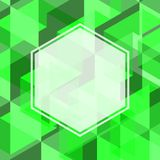 Abstract green color of geometric shape with blank space of whit. E hexagon with border background Used for environment concept, presentation, business template Stock Images