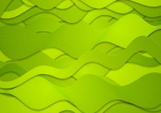 Abstract green curved waves, vector lines Stock Photography
