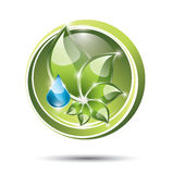 Eco label with plant and drop Royalty Free Stock Photo
