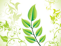 Abstract green eco leaf Royalty Free Stock Photo