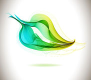 Abstract green eco leaf Stock Photography