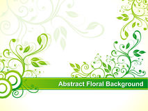 Abstract green floral background. Illustration Stock Photo