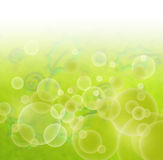 Abstract green floral blur background. Abstract green floral retro background with blured baubbles and leaves Stock Photos
