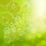Abstract green floral retro background. With blured baubbles and leaves Stock Photos