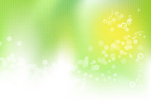 Abstract green floral spring background