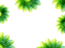Abstract green flower background Royalty Free Stock Images