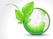 Abstract green globe with leaf Stock Photos