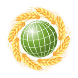 Abstract green globe with wheat ears Stock Image