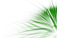 Abstract green grass background. With empty space for text royalty free illustration