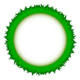 Abstract green grass circle frame vector whit. Wreath as a symbol of celebration or sorrow Royalty Free Stock Photos