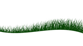 Abstract green grass Royalty Free Stock Images