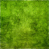 Abstract green grunge background. Space for text Stock Photography