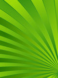 Abstract green leaf background Royalty Free Stock Photos