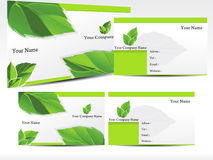 Abstract green leaf business card Stock Images