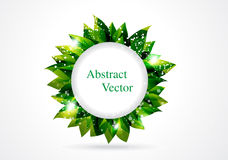 Abstract green leaf in circle Royalty Free Stock Photography