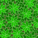 Abstract green leaf plant seamless background Stock Image