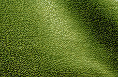 Abstract green leather texture. Stock Photos
