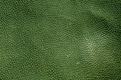 Abstract green leather texture. Stock Photo