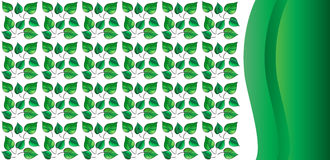 Abstract green leaves background Stock Photography