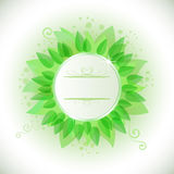 Abstract Green Leaves Frame Royalty Free Stock Image