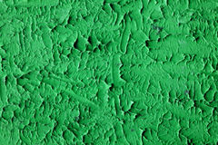 Abstract green mint stucco wall background Royalty Free Stock Photography