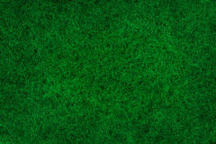 Abstract green mossy background Stock Photography