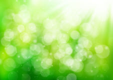 Abstract green nature background Stock Photography