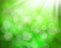 Abstract green nature background Stock Images