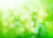 Abstract green nature background Royalty Free Stock Image