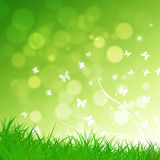 Green Nature Background. Abstract green nature background with grass and butterflies royalty free illustration