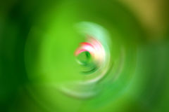 Abstract green. Nature blurred background stock photography