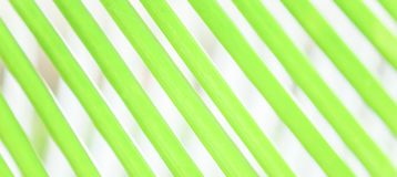 Abstract of green palm leaves on green palm leaves blur backgrounds, art shape and lines of leaves. Abstract of green palm leaves on green palm leaves blur stock image