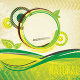 Abstract green retro brochure. Abstract green vintage brochure with circles and leafs Stock Image