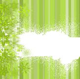 Abstract green with snowflakes Stock Photography