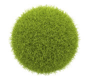 Abstract  green sphere of grass 3D. Isolate. Abstract  green sphere of grass 3D. Environment concept. Isolated on white background Royalty Free Stock Photos