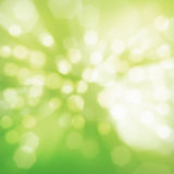 Abstract green in spring Royalty Free Stock Images