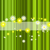 Abstract green stripe floral background Royalty Free Stock Photo