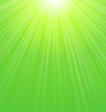 Abstract Green Sunbeam Background. Abstract Green Sunny Sunbeam Background - vector Royalty Free Stock Image